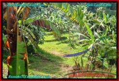 Affordable PROPERTY TABANAN LAND FOR SALE TJTB240