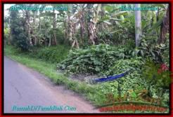 Exotic TABANAN BALI 1,000 m2 LAND FOR SALE TJTB243