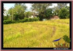 LAND SALE IN Tabanan Selemadeg BALI TJTB246