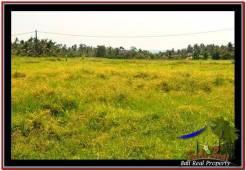 FOR SALE Affordable LAND IN Tabanan Selemadeg BALI TJTB258