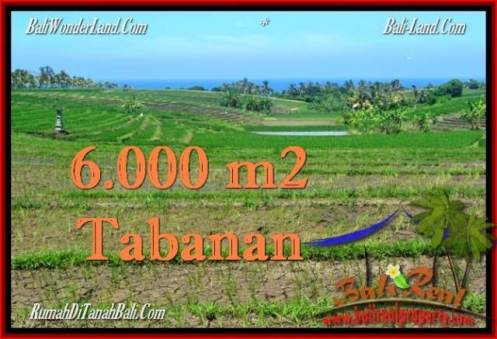 Magnificent PROPERTY Tabanan Selemadeg 6,000 m2 LAND FOR SALE TJTB268