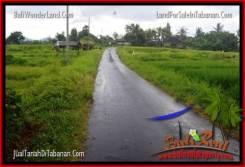 Beautiful PROPERTY 2,200 m2 LAND SALE IN Tabanan Selemadeg TJTB269