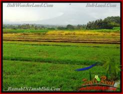 Magnificent PROPERTY LAND SALE IN TABANAN TJTB262
