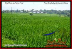 Magnificent 2,940 m2 LAND SALE IN TABANAN BALI TJTB265