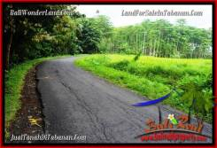 Magnificent LAND FOR SALE IN TABANAN TJTB285