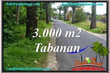 Magnificent LAND SALE IN Tabanan Kerambitan BALI TJTB297