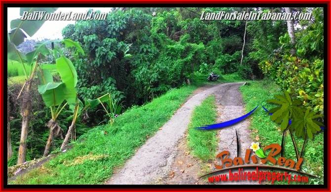 FOR SALE Magnificent PROPERTY LAND IN TABANAN TJTB280