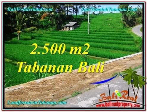 Beautiful PROPERTY Tabanan Penebel 2,500 m2 LAND FOR SALE TJTB305