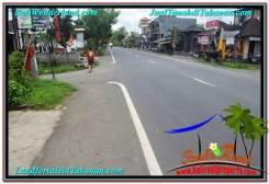 Exotic PROPERTY 3,500 m2 LAND FOR SALE IN Tabanan Kerambitan TJTB302