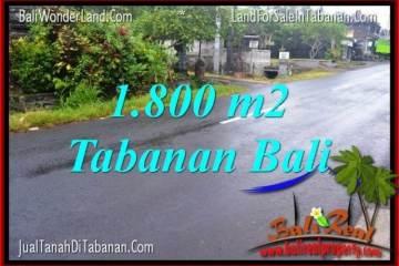 FOR SALE Magnificent LAND IN Tabanan Kota BALI TJTB321