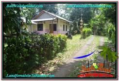 Beautiful PROPERTY Tabanan Penebel 1,200 m2 LAND FOR SALE TJTB294