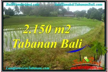 FOR SALE Beautiful PROPERTY 2,150 m2 LAND IN TABANAN TJTB312