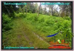 Affordable PROPERTY LAND FOR SALE IN TABANAN BALI TJTB313