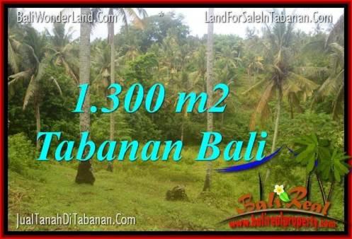 Magnificent PROPERTY TABANAN BALI 1,300 m2 LAND FOR SALE TJTB314