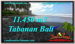 Magnificent PROPERTY 11,450 m2 LAND IN Tabanan Kerambitan FOR SALE TJTB291