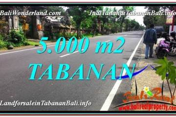 Magnificent PROPERTY 5,000 m2 LAND IN TABANAN FOR SALE TJTB332