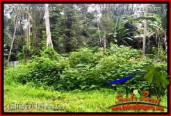 FOR SALE Affordable 4,850 m2 LAND IN TABANAN BALI TJTB330