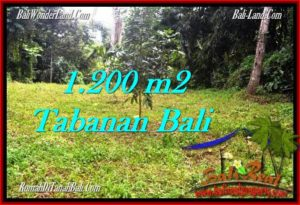 Magnificent PROPERTY LAND SALE IN TABANAN TJTB278