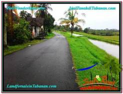 Magnificent LAND IN Tabanan Selemadeg BALI FOR SALE TJTB324