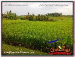 FOR SALE Affordable PROPERTY LAND IN TABANAN TJTB328