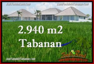Exotic PROPERTY 2,940 m2 LAND IN Tabanan Selemadeg FOR SALE TJTB265