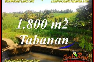 Affordable PROPERTY 1,800 m2 LAND IN Tabanan Selemadeg FOR SALE TJTB338