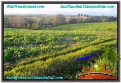 Magnificent PROPERTY 11,400 m2 LAND FOR SALE IN TABANAN BALI TJTB339