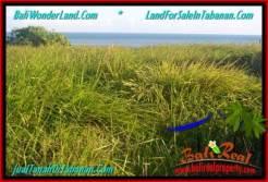 FOR SALE Affordable LAND IN Tabanan Selemadeg BALI TJTB341