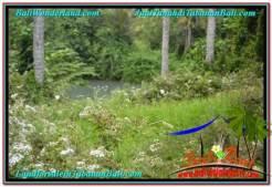 LAND IN Tabanan Selemadeg FOR SALE TJTB344