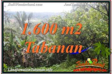 Beautiful PROPERTY TABANAN BALI LAND FOR SALE TJTB348