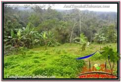 Beautiful Tabanan Selemadeg 9,800 m2 LAND FOR SALE TJTB350