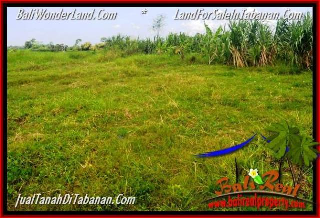 Magnificent LAND FOR SALE IN TABANAN TJTB351