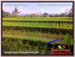 1,500 m2 LAND SALE IN TABANAN BALI TJTB353