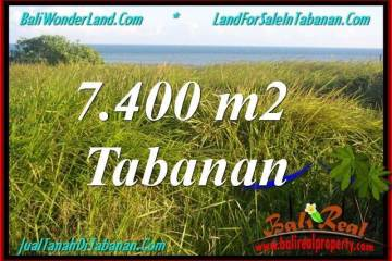 Beautiful LAND IN TABANAN FOR SALE TJTB341