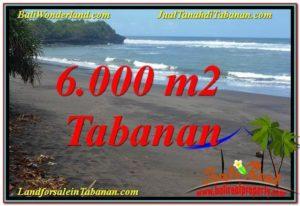 FOR SALE Exotic PROPERTY 6,000 m2 LAND IN Tabanan Selemadeg TJTB345