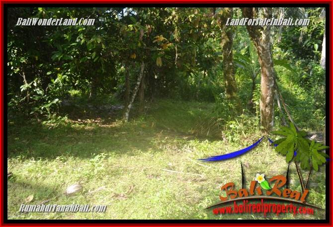 Affordable PROPERTY TABANAN LAND FOR SALE TJTB361