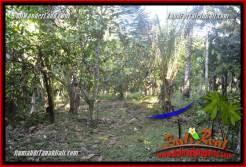 Affordable PROPERTY TABANAN LAND FOR SALE TJTB361