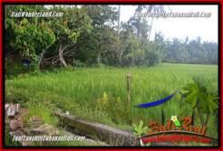 Exotic 1,000 m2 LAND FOR SALE IN Tabanan Selemadeg Timur TJTB363