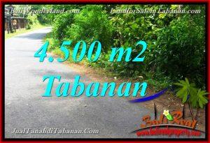 Affordable 4,500 m2 LAND FOR SALE IN TABANAN Selemadeg TJTB380