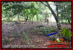 FOR SALE Affordable PROPERTY LAND IN Tabanan Selemadeg Timur BALI TJTB369