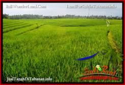 Exotic LAND SALE IN TABANAN TJTB394