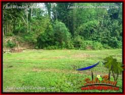 Cheap property 15,000 m2 LAND FOR SALE IN TABANAN KOTA BALI TJTB381