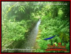 4,800 m2 LAND IN TABANAN FOR SALE TJTB387