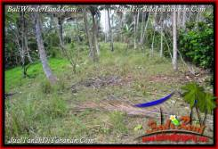 FOR SALE Exotic LAND IN TABANAN TJTB392