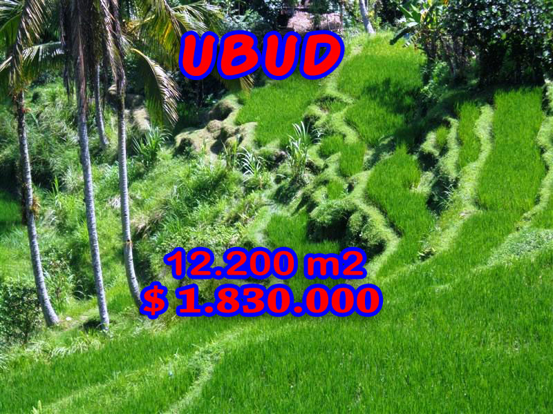 Land for sale in Ubud 12.200 sqm with River Valley and Paddy fields