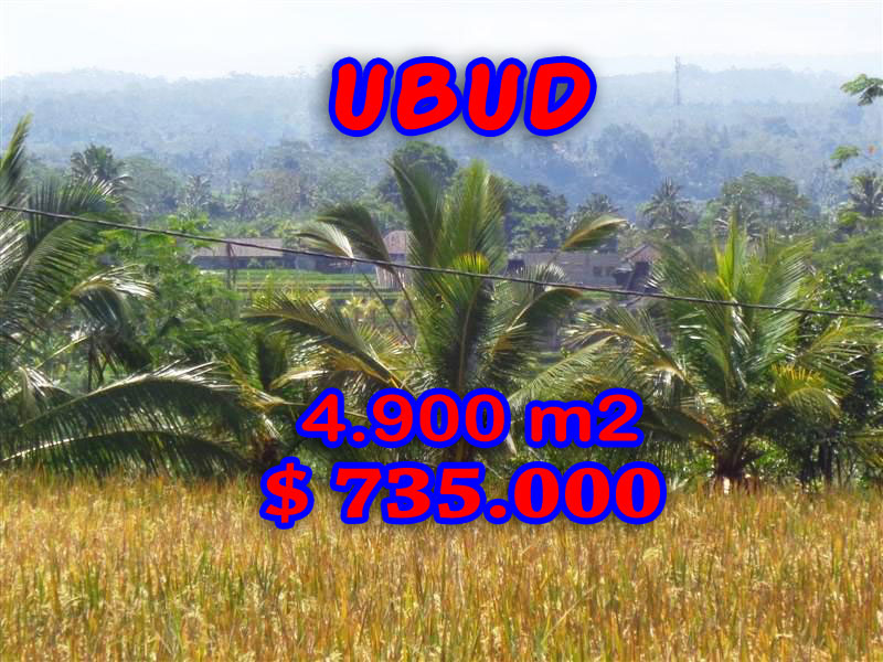 Land for sale in Ubud Bali rice fields and mountain view in Ubud Tegalalang
