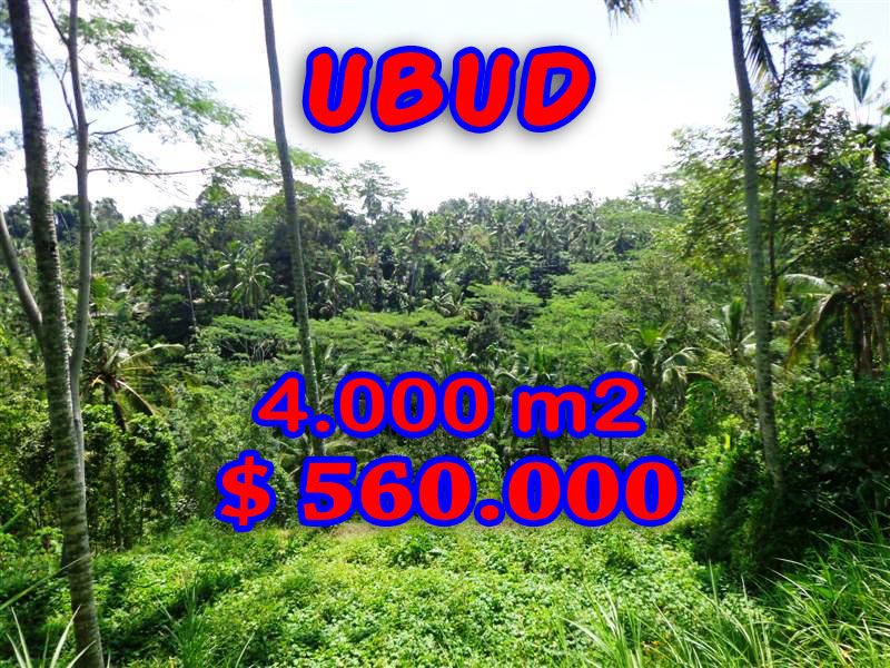 Land for sale in Ubud Bali Rice paddy and River Valley