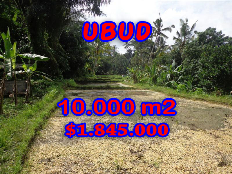 ExtraordinaryLand for sale in Ubud Bali, on the river  in Ubud center– TJUB258