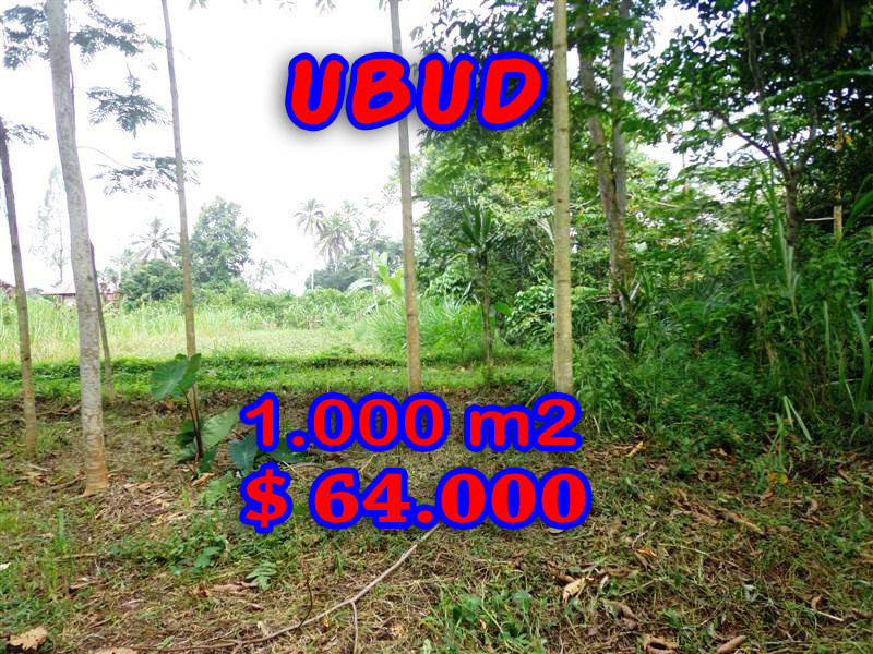 Splendid Property for sale in Bali, Ubud land for sale – 1.000 sqm @ $ 63