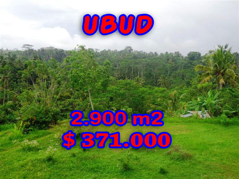 Land in Ubud for sale, Stunning view in Ubud Tampak Siring Bali – TJUB272